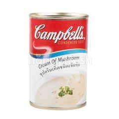 แคมเบลส์ แคมป์เบล ซุปครีมเห็ดชนิดเข้มข้น