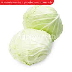 Royal Project Cabbage