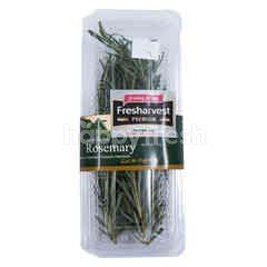 Fresharvest Premium Rosemary