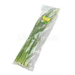 PPK Organic Garlic Chives