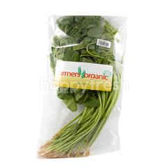 Ranch Organic Green Spinach