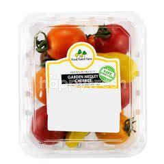 FOOD FOREST FARM Garden Medley Cherry Tomato