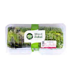 Amazing Farm Salad Selada Campur
