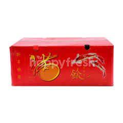 Zugar M Mandarin Orange