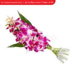 Bangkok Flower Orchids