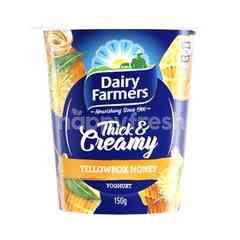 Dairy Farmers Thick & Creamy Yellow Honey Box Yoghurt