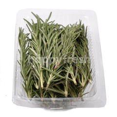 Living Organic Local Rosemary