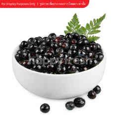 CAMPOSOL Fresh Blueberries