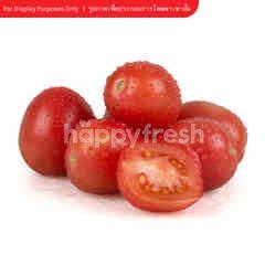 Tesco Sida Tomato