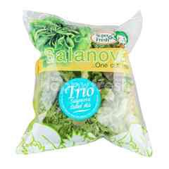 Super Fresh Trio Salanova Salad Mix