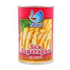Taiyo Sea Asparagus