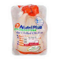 NUTRI PLUS Lacto Plus III Ebag Whole Chicken ~1.5kg