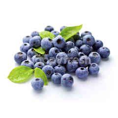 Alpasa Farms Blueberries