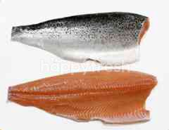 Atlantic Frozen Salmon Fillet Trim