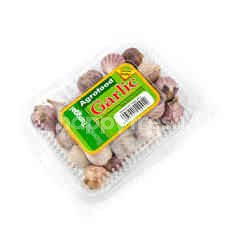 Agrofood Bawang Putih Tunggal