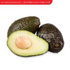 Tesco Avocado Imported