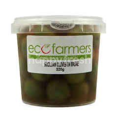 Eco Farmers Sicilian Olives in Brine