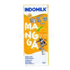 Indomilk Susu UHT Rasa Mangga