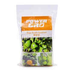 Power GRO Fruits Fertilizer