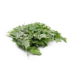 GENTING GARDEN Fresh Mizuna Salad Leaf