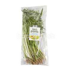 99 Organic Kangkung Pack
