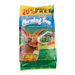 Best In Show Morning Sun Rabbit Food