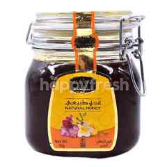 Al Shifa Pure Honey