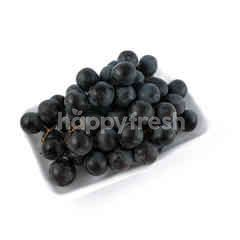 Black Seedless Grape