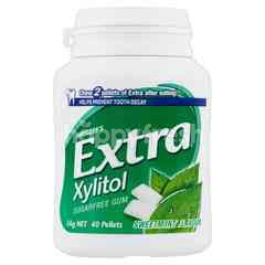 Wrigley's Extra Xylitol Sugarfree Gum Sweet Mint Flavour
