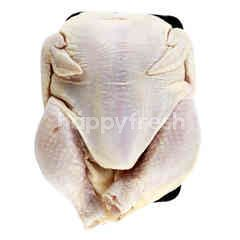 ABF Whole Chicken Without Head & Feet