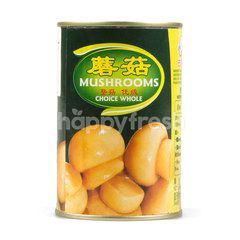 Gu Long Champignon Mushrooms In Brine
