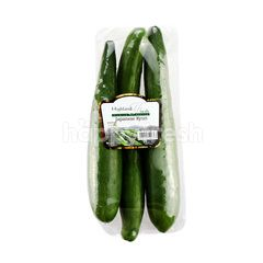 HIGHLAND FRESH Japanese Kyuri Cucumber