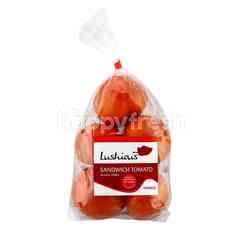 Lushious Sandwich Tomato