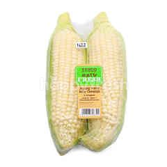 Cameron Sweet Corn (2 Pieces)