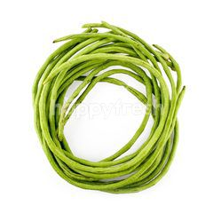 AGAPE ORGANIC Long Bean