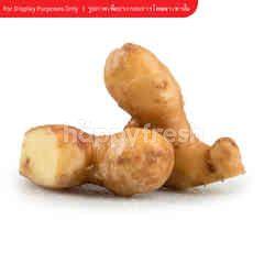 Tesco Matured Ginger
