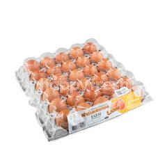 Sangthong Farm Fresh Eggs Size L 30 Pcs