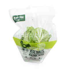 Eat Me Hydroponic Green Butterhead Lettuce