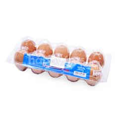 Fresh Farm Medium Eggs (10 Pieces)