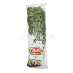 Wado Organic Celery