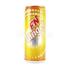 F&N Ginger Ade Sparkling Flavoured Drink
