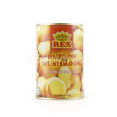 Rex Button Mushroom