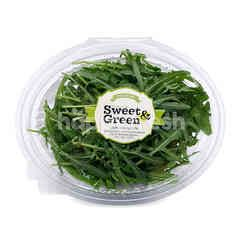 Sweet & Green Wild Rocket Lettuce