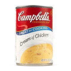 แคมเบลส์ ซุปครีมไก่เข้มข้น