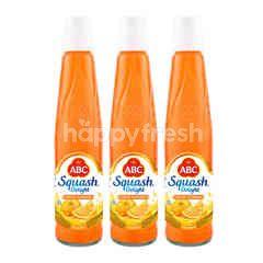 ABC Squash Delight Florida Orange Syrup Triplepack