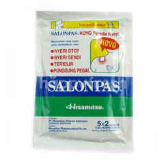 Hisamitsu Relieve Pain Koyo for Muscle, Hinge and Backache with Back and Forth Sheet