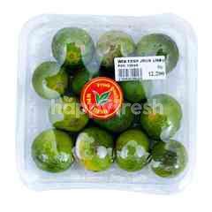 WIN Fresh Lime