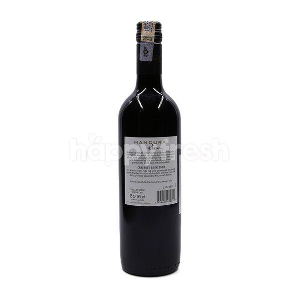 MANCURA Etnia Cabernet Sauvignon 2016 Red Wine