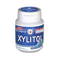 Lotte Xylitol Fresh Mint