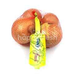 Daily Fresh Onion